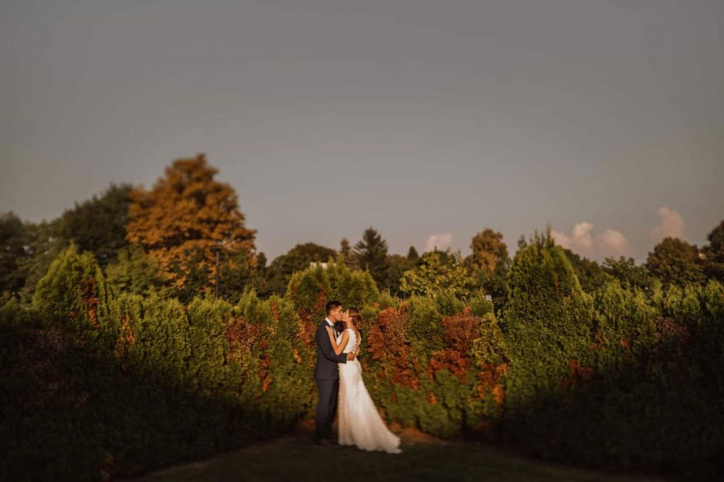 Newly married couple kiss in the nature